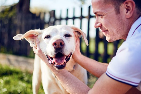 happy-dog-and-his-owner-GA8QN4Z.jpg
